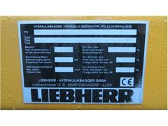 Liebherr R 313