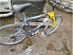 1 Mountain bike